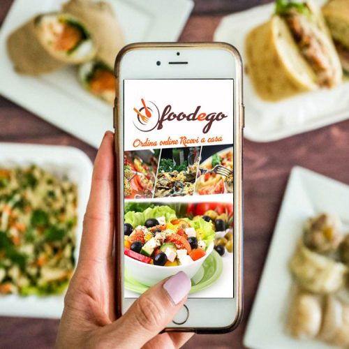 foodego-delivery2